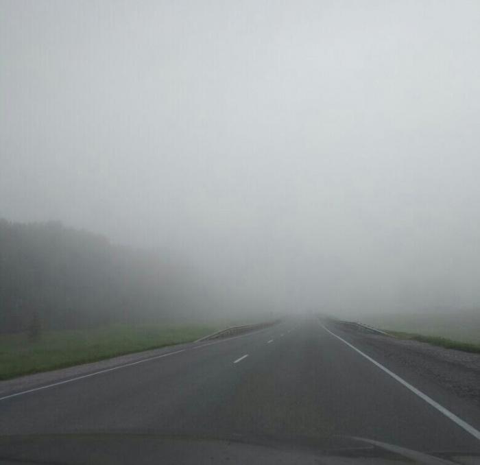 Туман на трассе в Новосибирской области утром 21 июля
