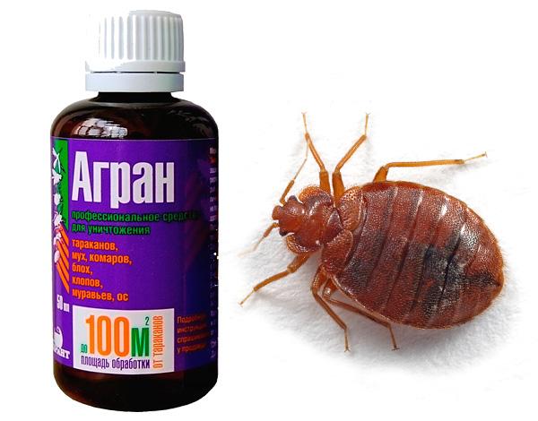 Действительно ли инсектицидный препарат Агран способен эффективно уничтожать клопов?..