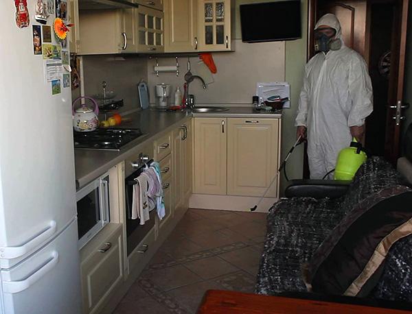 Как правило, обработать однокомнатную квартиру от тараканов будет стоить 1500-2000 рублей.